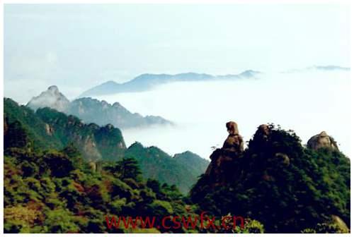 描写山上风景的好句子