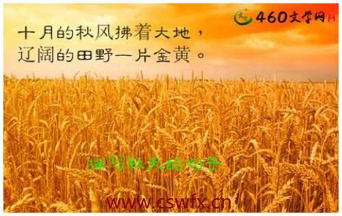 描写稻谷的优美句子