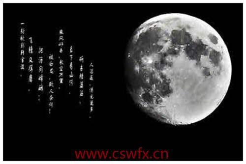 描写美丽月光的句子