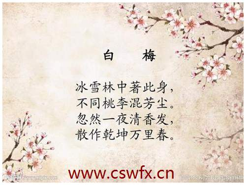 描写春天梅花的短句子