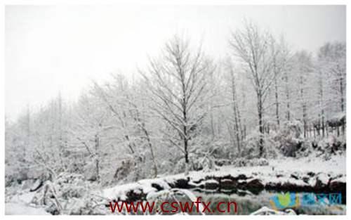 描写雪景物的优美句子 句子大全 第1张