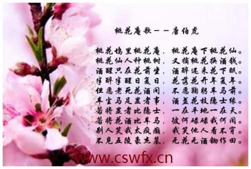 描写各类花的句子