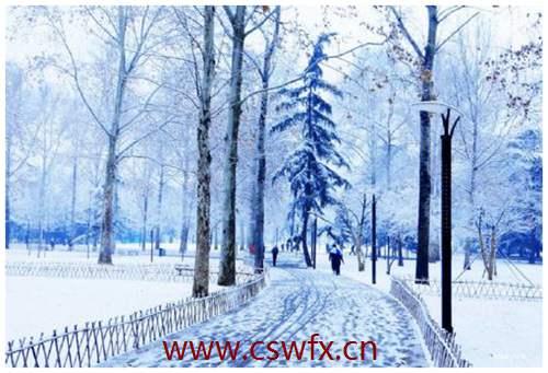 描写雪很美丽的句子