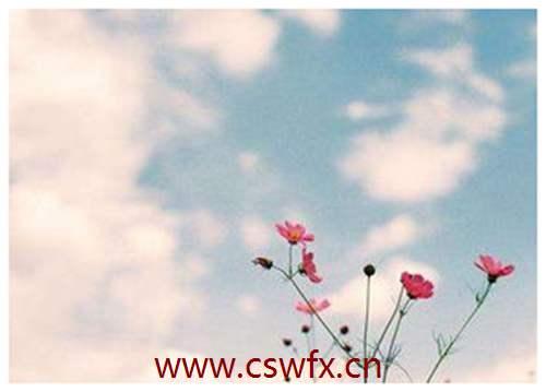 描写春天美丽景色的优美句子