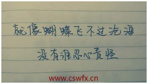 描写蝴蝶爱情的句子