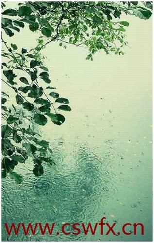 描写雨的句子