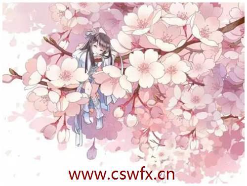 描写樱花的古风唯美句子 句子大全 第1张