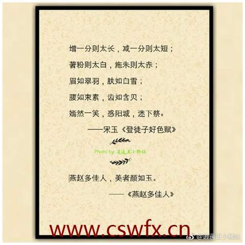 描写深圳句子