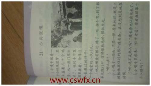 描写小兵张嘎的句子