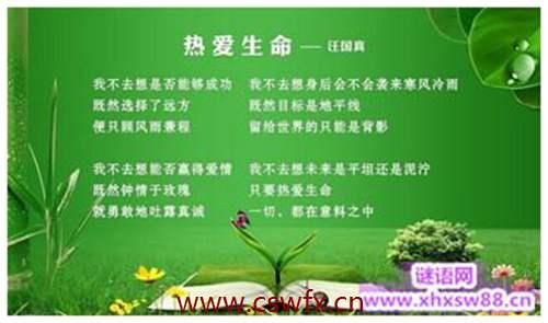 描写生命绿色的句子