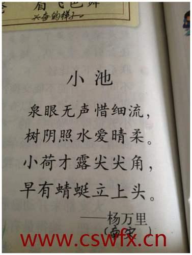 描写杭州夏天的句子