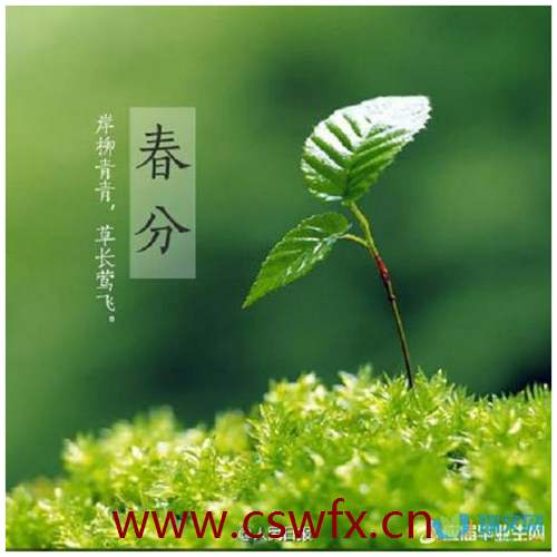 描写绿化地的句子