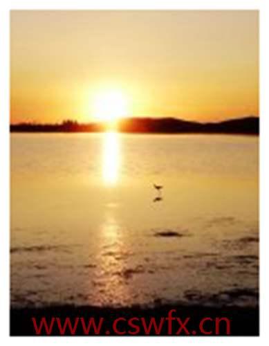 描写晚霞和日落的优美的句子