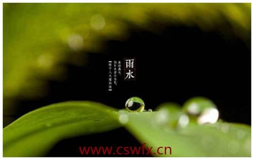 描写雨水的优美句子
