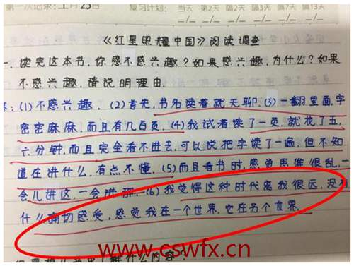 描写红星照耀中国的句子