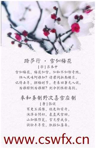 描写雪和心情相关的句子
