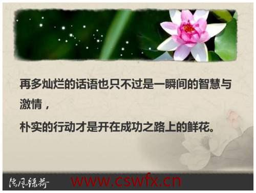 描写智慧与成功的句子 句子大全 第1张