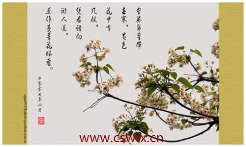 描写夏天的花的句子