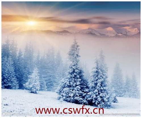描写南方冬季美景的句子