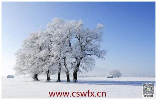 描写冬天景色的优美句子