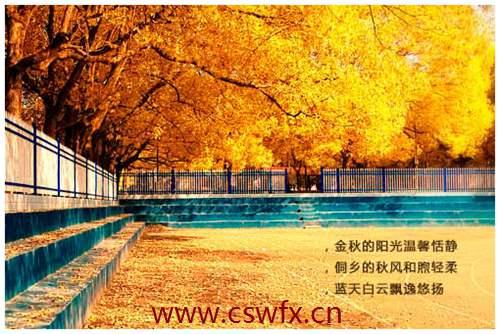 描写秋天景色的的句子