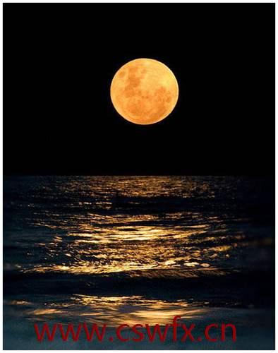 描写晚上月亮的句子 句子大全 第1张