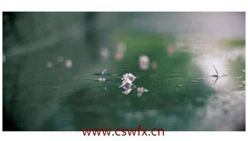 描写蒙蒙细雨的伤感句子