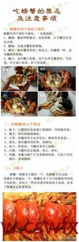 描写螃蟹优美句子