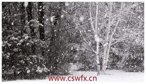 描写大雪大风的句子