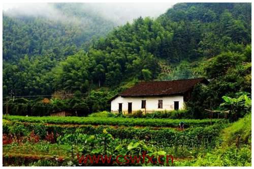 描写农村风景的句子