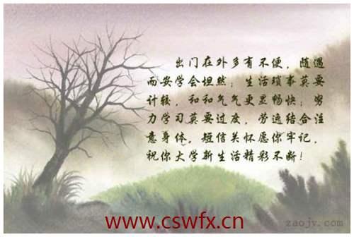 描写中国新生活的句子