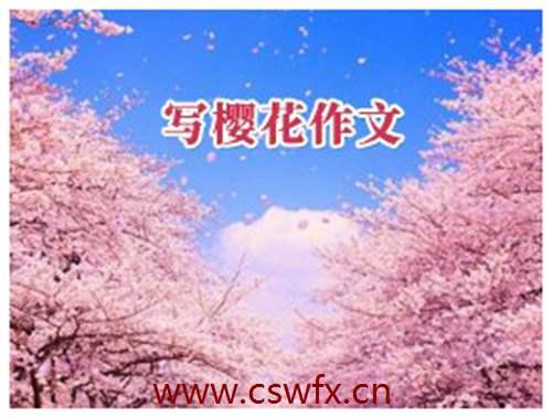 描写樱花夏天的句子