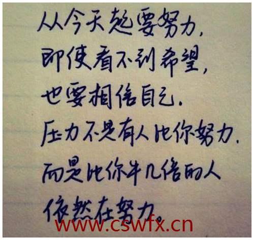 描写生活和努力的句子