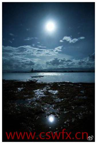 描写大海与月光的句子 句子大全 第2张