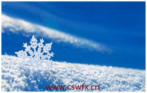 描写雪的唯美短句子 句子大全 第2张