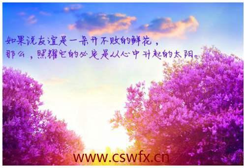 描写花与生活的优美句子 句子大全 第2张