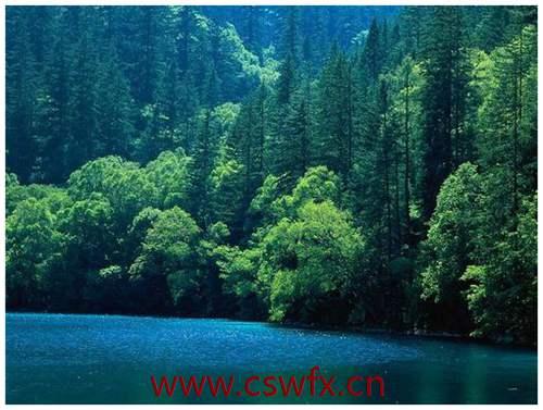 描写中国自然景观的句子 句子大全 第2张