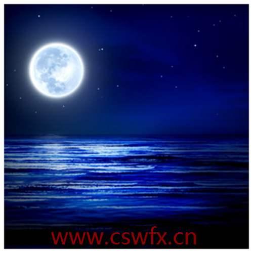 描写大海与月光的句子 句子大全 第3张