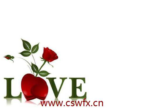 描写红玫瑰的爱情句子 句子大全 第3张