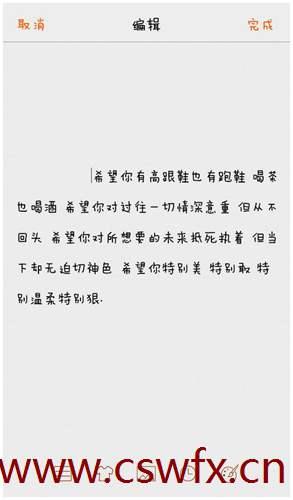 描写情感坚强的句子 句子大全 第3张